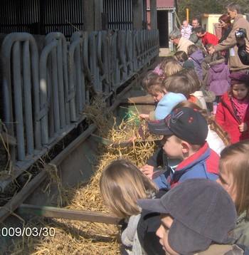 La classe de Moyenne-Section à la ferme.