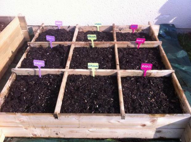Cultivons et mangeons les légumes et fruits de saison