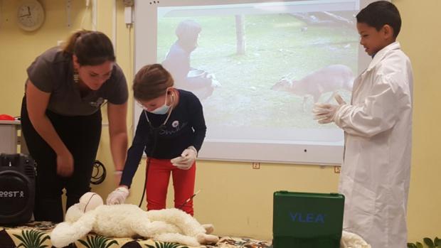 Soigneurs et vétérinaires