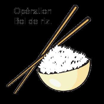 Opération Bol de riz 2010