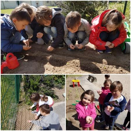 Atelier jardinage en maternelle