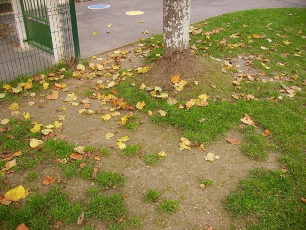 Rentrée d'automne