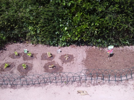 Tous au jardin !