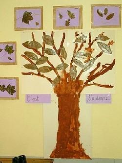 Ecole Sacré Coeur, Ouistreham, l'arbre