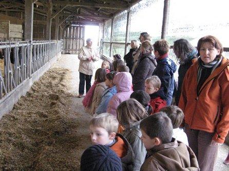 Visite à la ferme