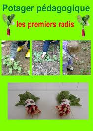 Les petits jardiniers ont mangé leurs radis!