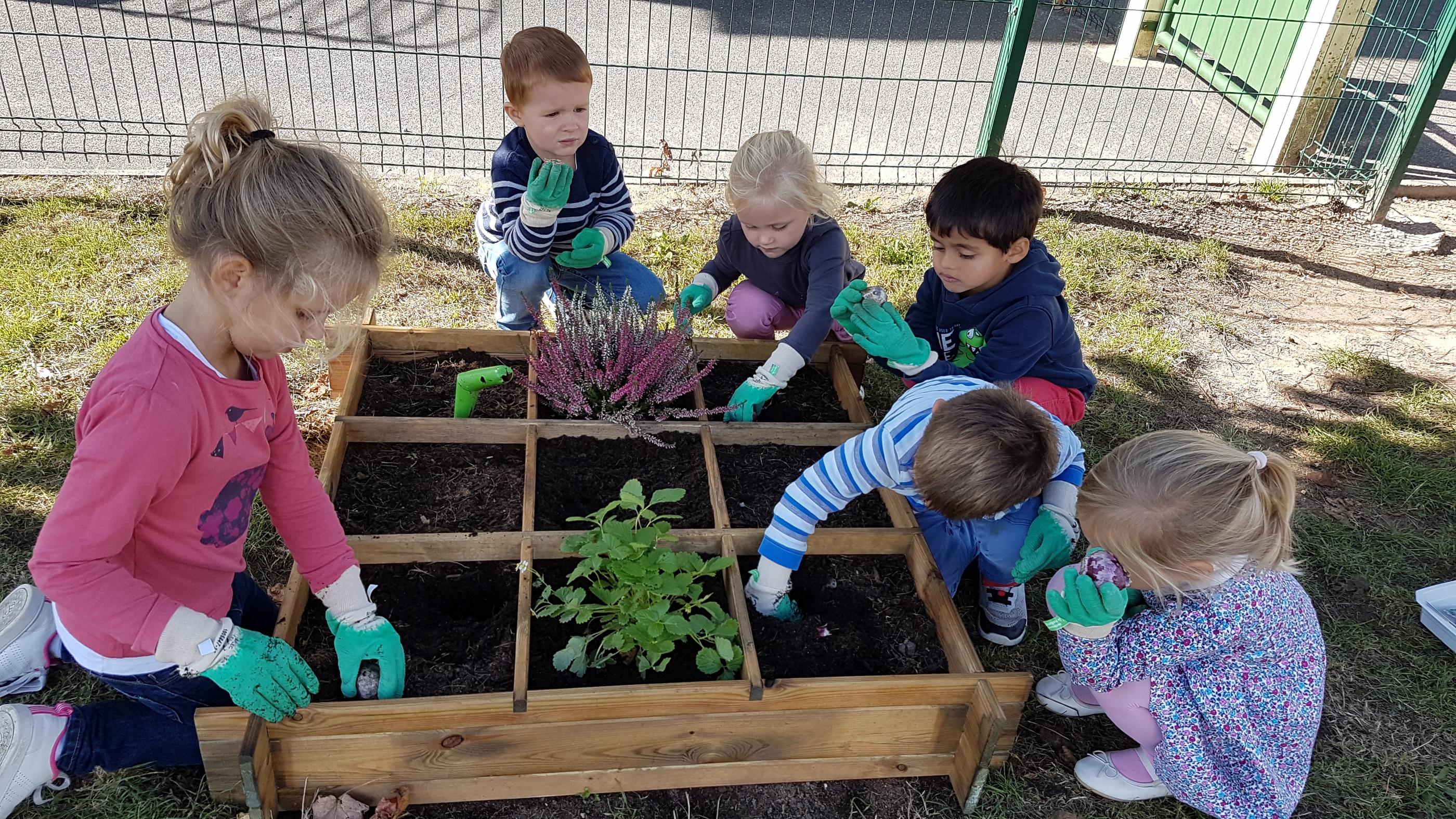 Jardinage d'automne en maternelle