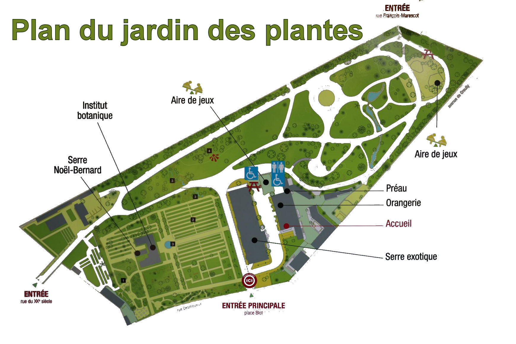 Jardin des plantes de Caen CP