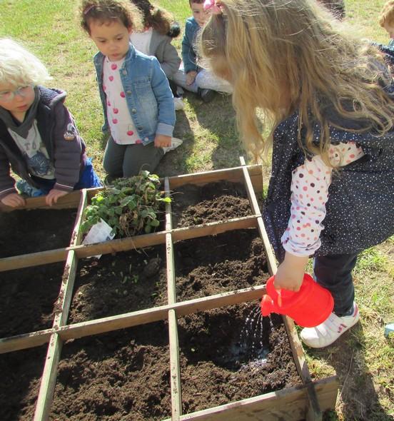 Les petits jardiniers