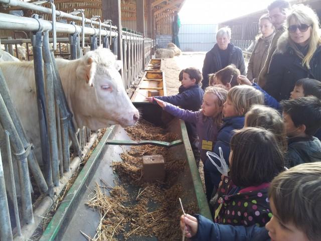 Visite de la ferme Vergy