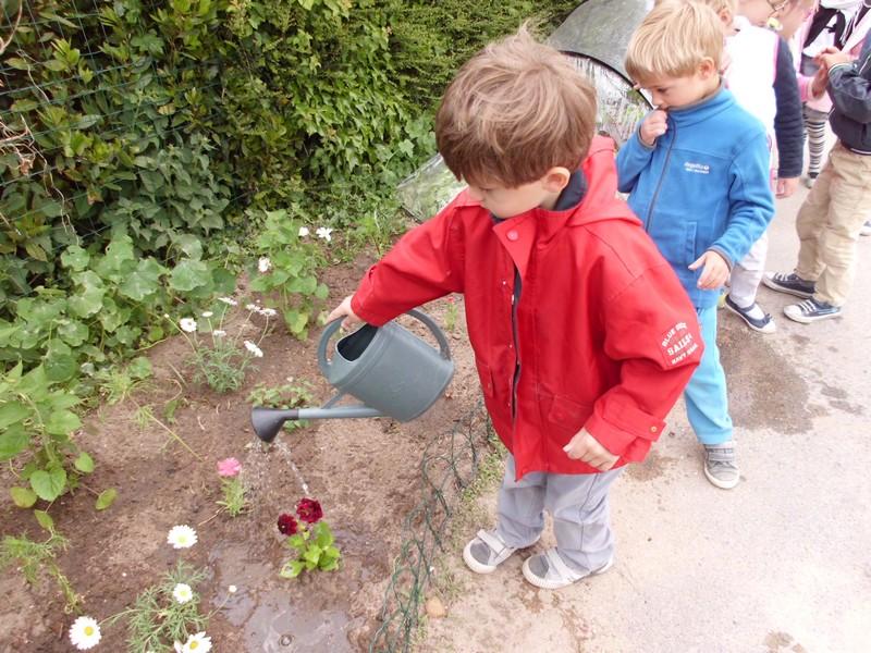 Les jardiniers en herbe