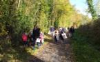 Promenade au bois du Caprice