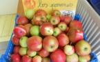 Les pommes en PS MS