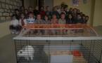 Des petits visiteurs dans notre classe!