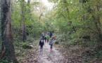 Balade au bois du Caprice des MS-GS