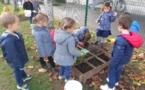 les petites bêtes du jardin de l'école