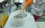On commence par déchirer  des petits bouts de papier usagés et on ajoute de l'eau chaude.