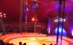 Spectacle de cirque sous le chapiteau !