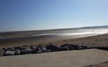 Promenons-nous sur la plage ...