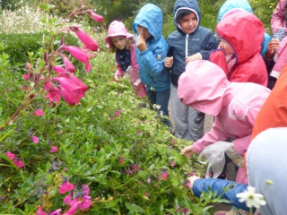 Les ce1 au jardin des plantes de caen - Le jardin des plantes caen ...